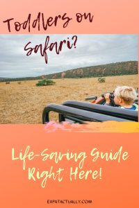 Ultimate Guide for Toddlers on African Safari